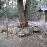 関山神社に参拝 その3