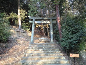 関山神社奥の宮の鳥居
