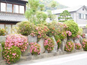 岩と花の壁