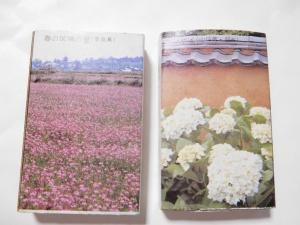春の斑鳩の里&アジサイ(山口県・萩市)